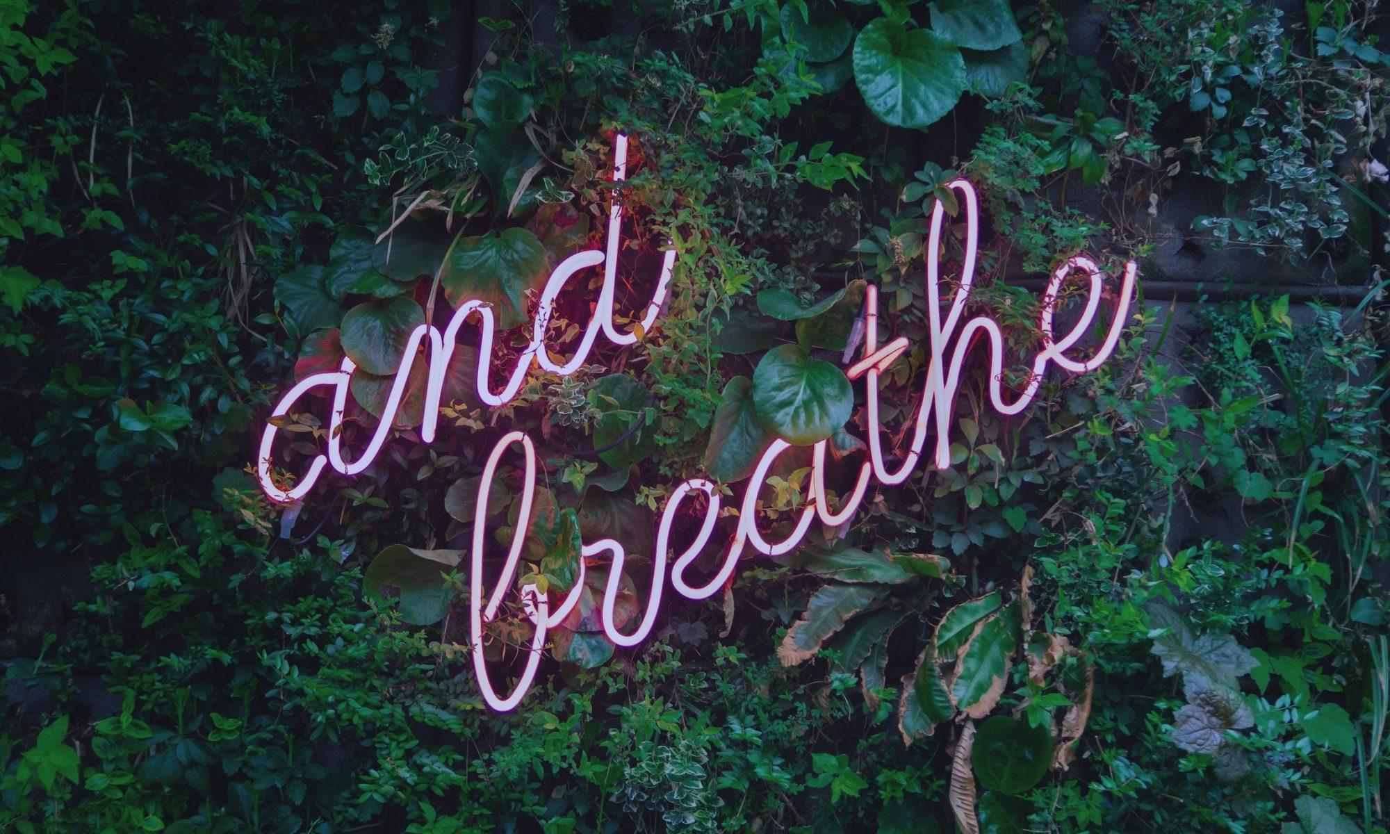 """Schriftzug """"and breathe"""" in rosa vor einer mit Rankpflanzen bewachsenen Wand"""